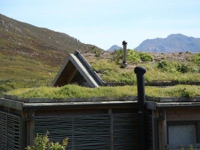 Green roof with indigenous water-wise planting